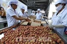2021年前5个月越南商品出口额增长30.7%