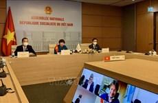 越南国会代表团出席法语国家议会大会议会事务委员会会议