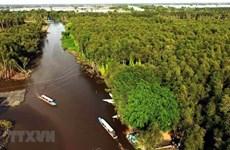 6·5世界环境日:保护九龙江三角洲生态系统