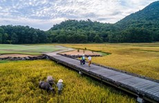 6.5世界环境日:坚持环保推动旅游业可持续发展