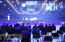 越南出席第24届圣彼得堡国际经济论坛