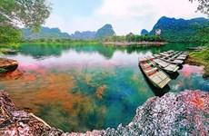 """""""越南国际摄影节""""标志及品牌标识设计大赛举行"""