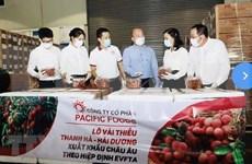 越南荔枝征服欧盟市场