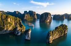 广宁省游轮企业提出解决方案 助力战胜疫情