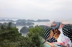 越南力争实现生态系统恢复的目标