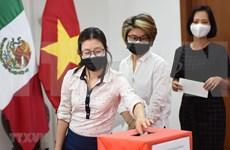 海外越南人积极行动 助力越南抗击疫情