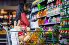 越南国内各大企业和集团加大对零售业的投资力度