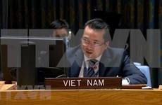 联合国安理会讨论利比亚的外国战士和雇佣兵问题