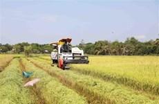 澳大利亚驻越南副总领事丽贝卡·鲍尔:越南有望成为澳大利亚第五大农产品出口市场