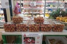 帮助越南企业把产品送到欧洲消费者手中