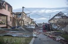 旅居捷克越南人携手努力克服自然灾害的后果
