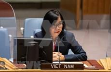 越南与联合国安理会:越南支持促进重新执行《联合全面行动计划》的外交努力