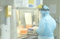 7月5日上午越南新冠肺炎确诊病例突破两万例