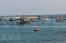 乌克兰专家强调国际法在东海问题中的作用