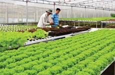 疫情围困之下 农产品出口获大丰收