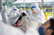 东南亚新冠肺炎疫情:马来西亚、印尼报告单日新增确诊病例创新高