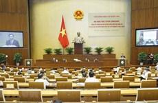 越南国会主席王廷惠主持召开选举工作总结会议