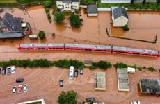 越南领导人就德国遭受洪水袭击向德国领导致慰问电
