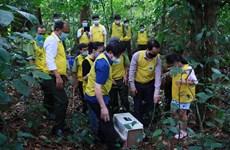 """越南首个国家公园将野生动物""""放归回家""""的特殊倡议"""