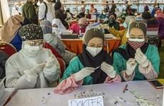 东南亚部分国家的新冠肺炎疫情形势