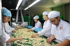 越南腰果出口30多年来首次出现贸易逆差