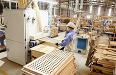 越南木业披荆斩棘 实现引人瞩目的增长