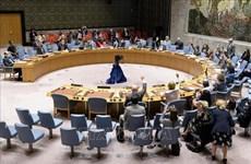 越南与联合国安理会:越南呼吁采取紧急行动防止黎巴嫩崩溃