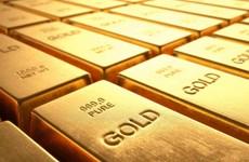 7月23日上午越南国内黄金价格上涨5万越盾