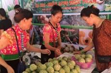 越南推动偏远及海岛地区的贸易发展