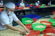 对英国出口农产品:尽快抓住UKVFTA带来的机遇,扩大市场份额