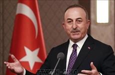 土耳其外长:东盟与土耳其关系发展前景乐观