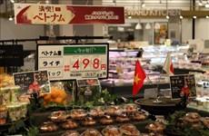 日本新潟县与越南各地方促进经济合作