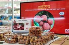 """线上贸促活动:为越南商品通往世界开启""""绿色通道"""""""