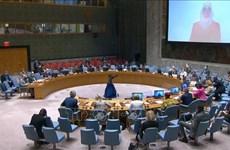 越南与联合国安理会:越南提议优先向叙利亚人民提供人道主义援助