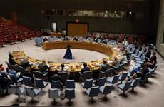 越南与联合国安理会:联合国安理会完成八月议程