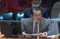 越南与联合国安理会:越南谴责使用化学武器的行为