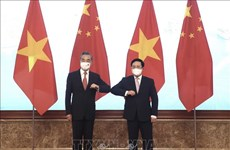 越中双边合作指导委员会召开第十三次会议