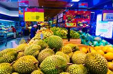 越南Ri6榴莲占领澳大利亚市场