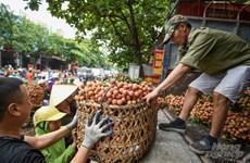 电子商务促进农产品销售