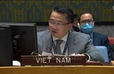 越南与联合国安理会:越南呼吁为苏丹获得国际金融资源提供便利