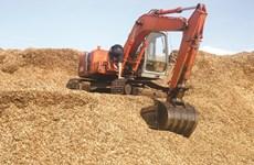 今年前7个月越南木屑出口额超过10亿美元