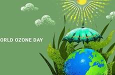 保护臭氧层国际日:越南为保护臭氧层贡献力量
