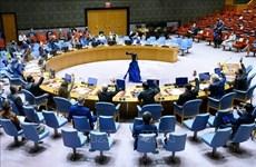 越南与联合国安理会:非法贸易小型枪支和轻武器危害国际和平与安全