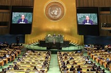 越南加入联合国 44 周年:致力于和平与可持续发展的强有力伙伴