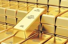9月20日上午越南国内黄金价格上涨15万越盾