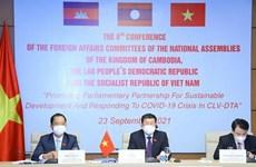 越老柬三国国会对外委员会关于发展三角区的第八次会议开幕