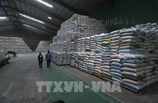 继续向胡志明市发放逾56555吨大米援助受疫情影响的民众