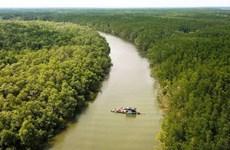 沿海地区森林保护与开发提案获批
