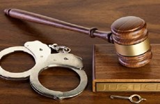 伪造证件企图在越工作的一名外国人获刑两年 服刑结束后驱逐出境