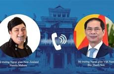 越南外交部长裴青山与新西兰外交部长马胡塔通电话